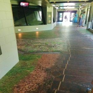 Museum Floor Graphics - 2