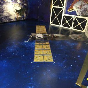 Museum Floor Graphics - 4