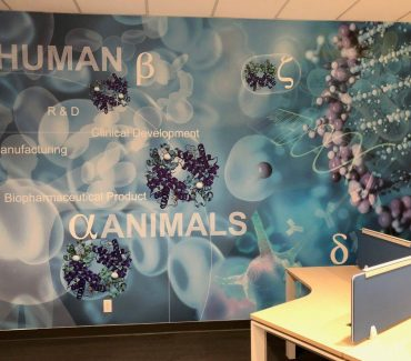 Office Improvement Environmental Graphics 29
