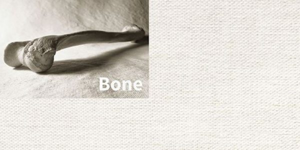 Squid Textiles - Bone