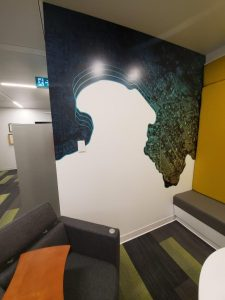 Wall Mural and Wall Graphics Vancouver 13