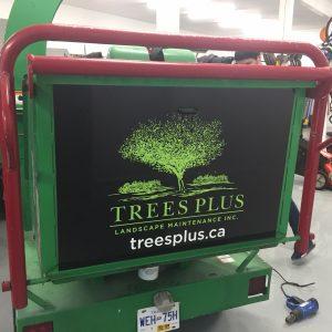 trees_plus4