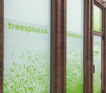 treesplus_4