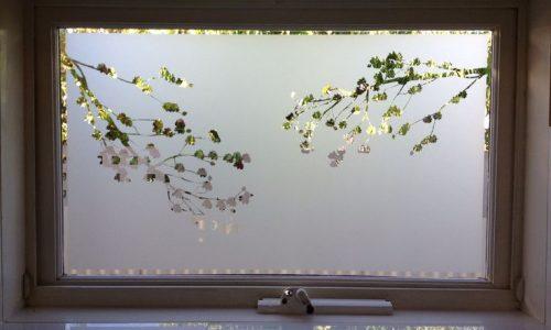 window -1